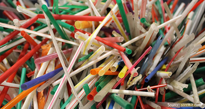 Website—Reduce Straws